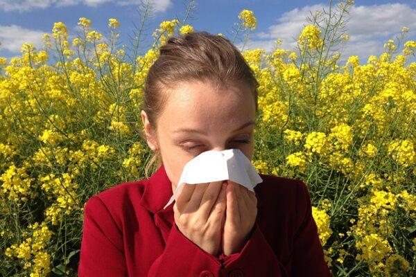 Allergia ellen hatékony